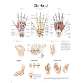 Plakat med hånd tysk og engelsk