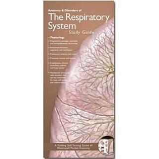 Åndedræt anatomisk brochure