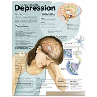 Forståelse af depression engelsk lamineret (forståelse af depression)