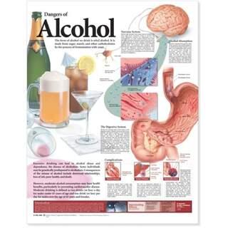 Lamineret plakat på alkoholens skadelige virkninger på engelsk