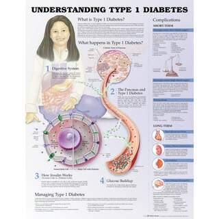 Type 1 diabetes - Plakat / planer
